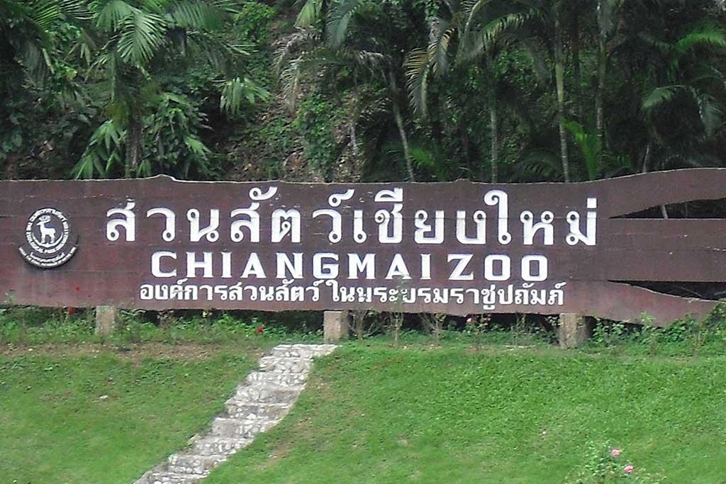 Chiangmaizoo